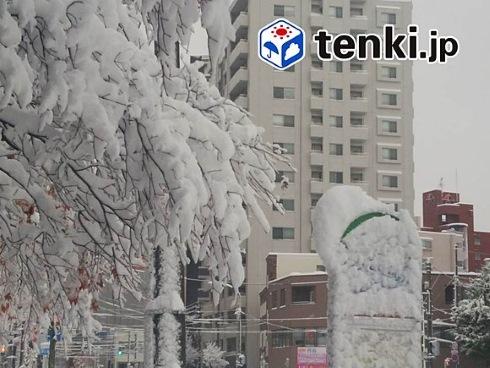 天気 北海道 雪