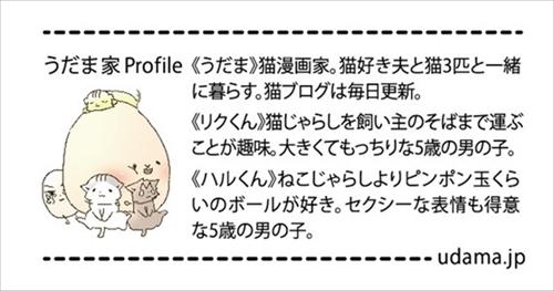 フェリシモ猫部・抱きまくら&ポーチ