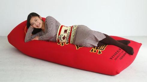 養命酒の抱き枕使用画像