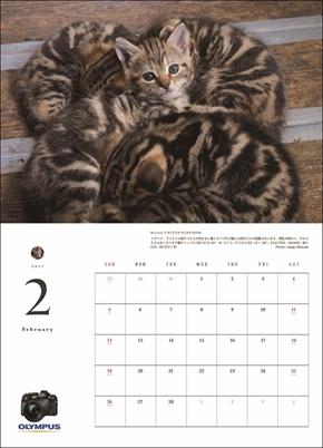 アサヒカメラカレンダー