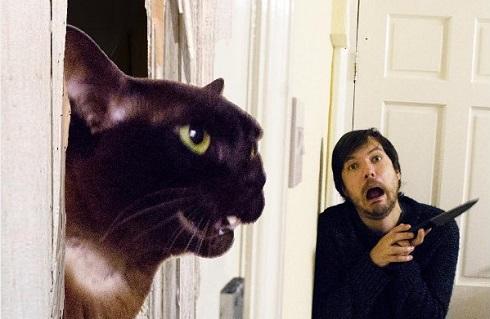 猫 映画 名場面 再現 写真 シャイニング