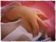 """ガンダム「00」「AGE」「THE ORIGIN」で""""母親役"""" 声優・恒松あゆみが第1子を出産、ついに本当の母になる"""