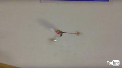 カエデドローン飛ぶ