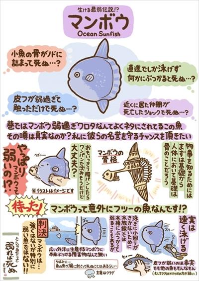 いきもの図鑑