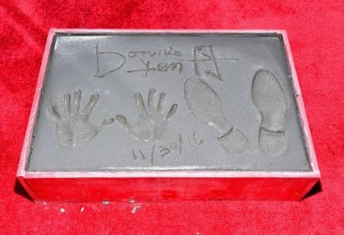 ハリウッド殿堂入りを果たしたドニー・イェンの手形