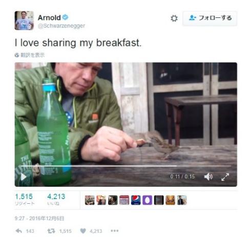 小鳥にパンをやるアーノルド・シュワルツェネッガー