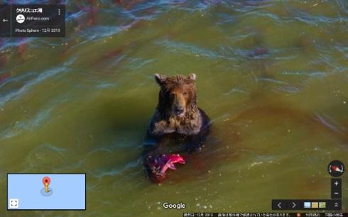 ロシア 湖 熊 鮭