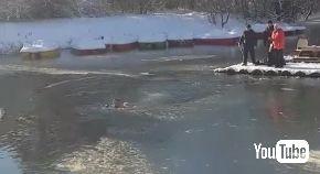 ロシア 公園 池 凍る 犬 救助 飛び込み