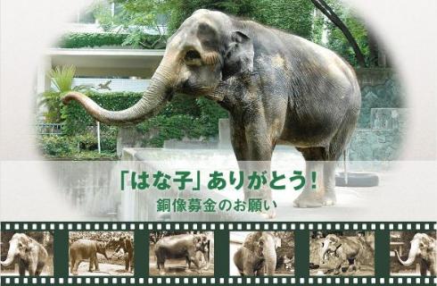 はな子 ゾウ 銅像 井の頭自然文化園 募金