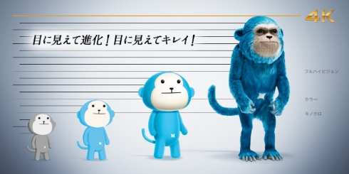 ひかりTV 4K 比較 猿