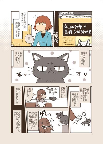 飼い猫が、自分にだけゆっくりまばたきする仕草を見せており、死んでからそれに愛情表現の意味があることを知ったという内容です。その猫はいつもムスッとした表情をし  ...