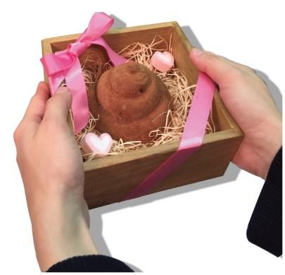 ヴィレッジヴァンガード バレンタインデー 人体臓器 うんち シリコントレー