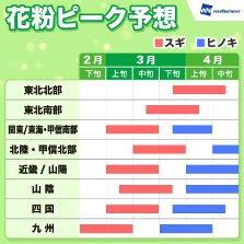 花粉 シーズンイン 関東 九州 突入 ウェザーニューズ スギ