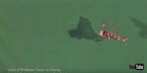 コウモリのように飛ぶドローン