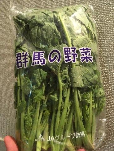 群馬の野菜 かき菜 のらぼう菜 JAグループ群馬