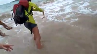ブラジルでサメにかまれた観光客、約36万円の罰金を請求される 保護区でちょっかいを出しちゃだめという教訓