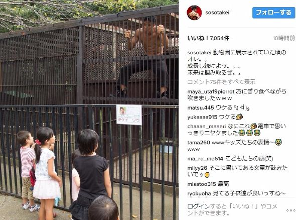 武井壮 動物園