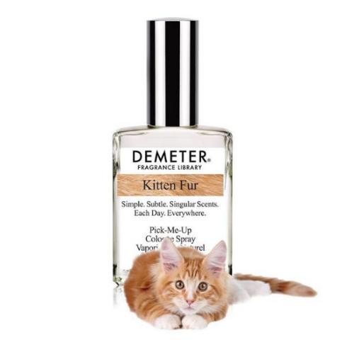 猫 香水 匂い 子猫