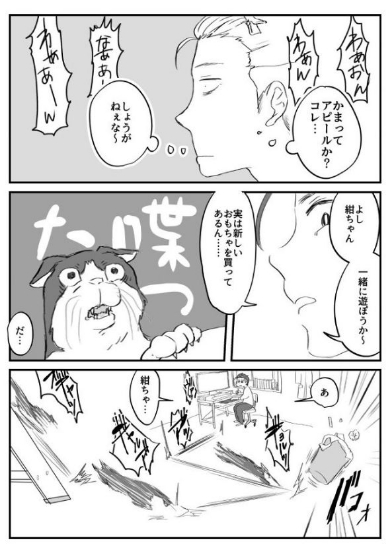 猫 ビビリ スーパーボール 漫画