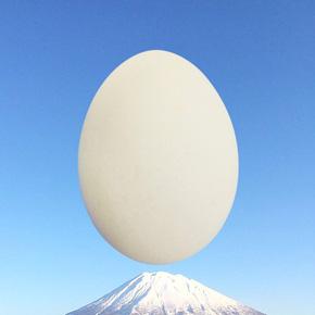卵型アイコン