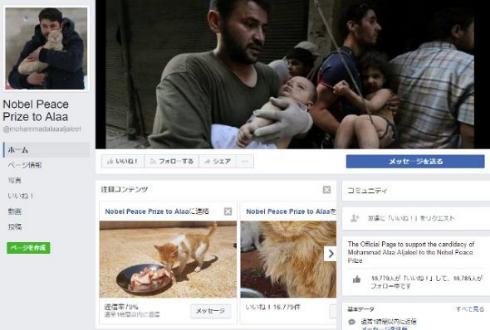 シリア アレッポ 猫 犬 救助 ノーベル平和賞