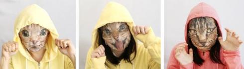 猫 なりきり フェイスパック 実写
