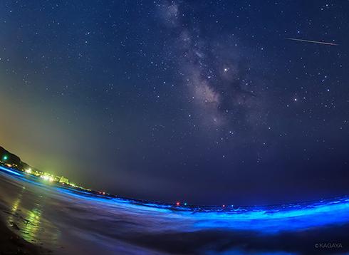 夜光虫とみずがめ座η(エータ)流星群