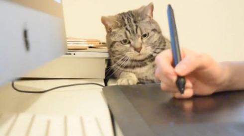 猫 ペンタブ 指導 こまち