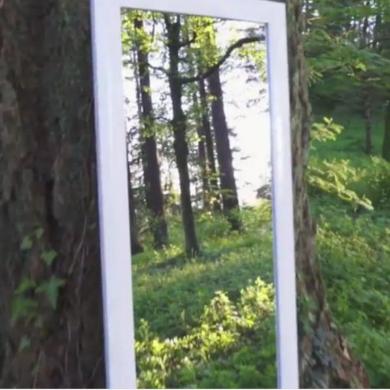 鏡 中 入る イリュージョン 不思議 動画