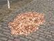1万5000枚のコインが落ちてたらどうする? ロンドンで行われた「社会実験」が話題に