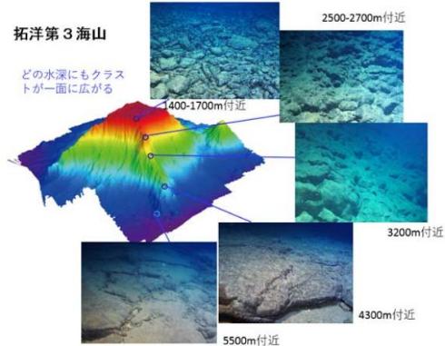 本州近海 レアメタル 発見 コバルトリッチクラスト