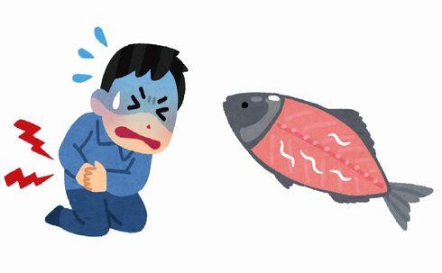 アニサキス 魚 寄生虫 安全 刺身