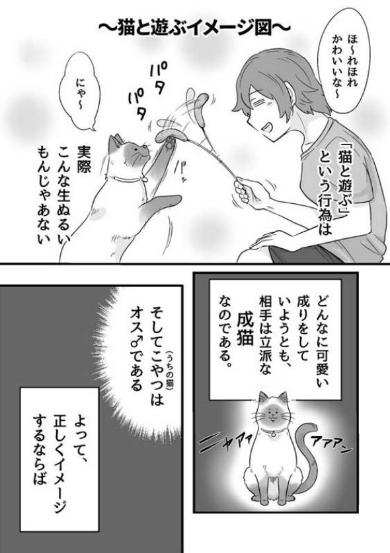 猫 遊ぶ 疲れる 漫画 ゴンさん 本気