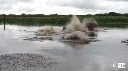 川 爆発 マナティー 動画