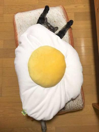 猫 朝食 目玉焼き クッション 食パン