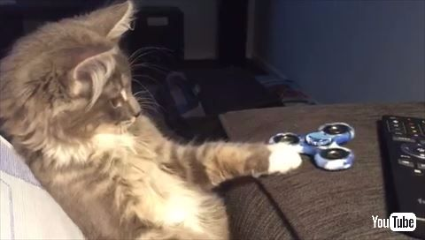 猫 ハンドスピナー