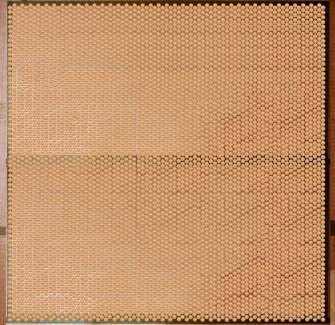 畳に500円玉を敷き詰めた画像