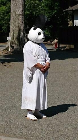 神社にパンダのかぶり物した宮司...