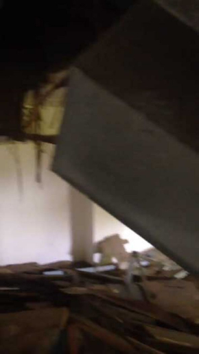 廃墟 撮影 動画 馬