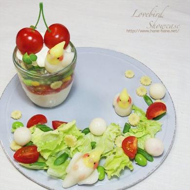 インコ 白玉 野菜 ゼリー