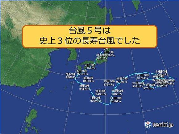 台風5号大往生