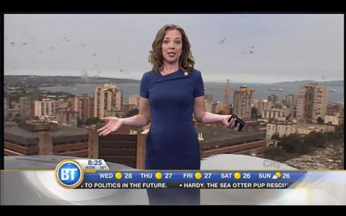 カナダのニュース番組、巨大カモメが映り込むハプニング