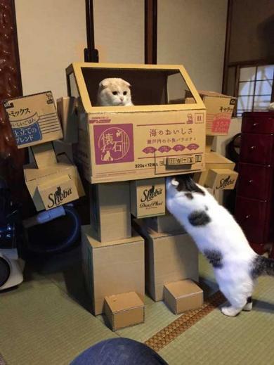 猫 ロボ 段ボール 立体化