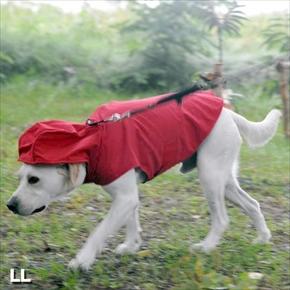 犬用レインコート