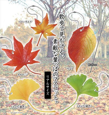散歩で見かける素敵な葉っぱのマスコット