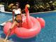 3倍速く泳ぎそう! ダレノガレ明美、ピンクフラミンゴ浮輪を相棒にプールエンジョイ