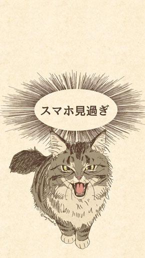 しかりネコ