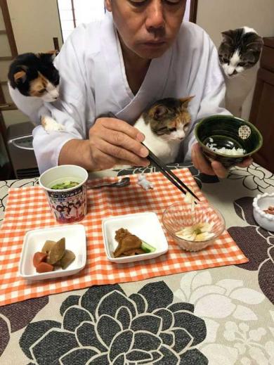 長楽寺 猫 三位一体 住職