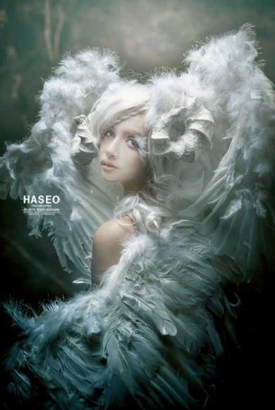 美しい写真絵本の世界 HASEO 写真展 闇王の写真絵本