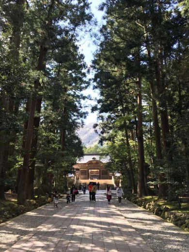 日本 夏 フォトジェニック 観光スポット インスタ映え